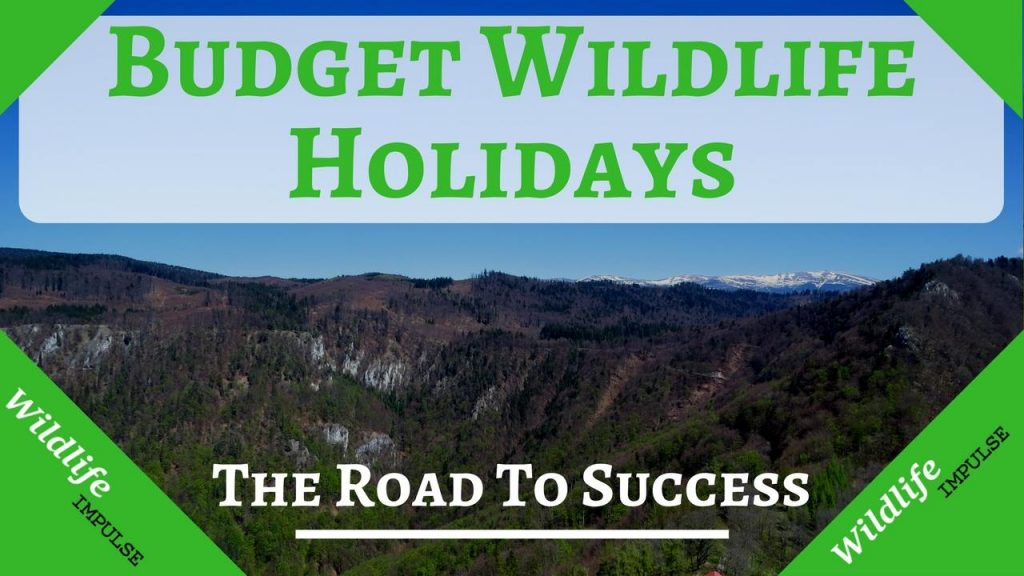 Budget wildlife holidays