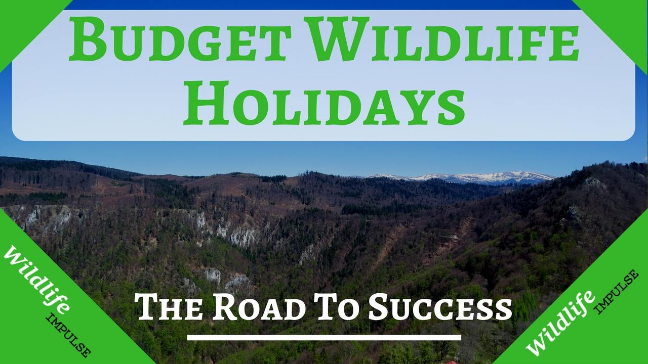 Budget wildlife holidays