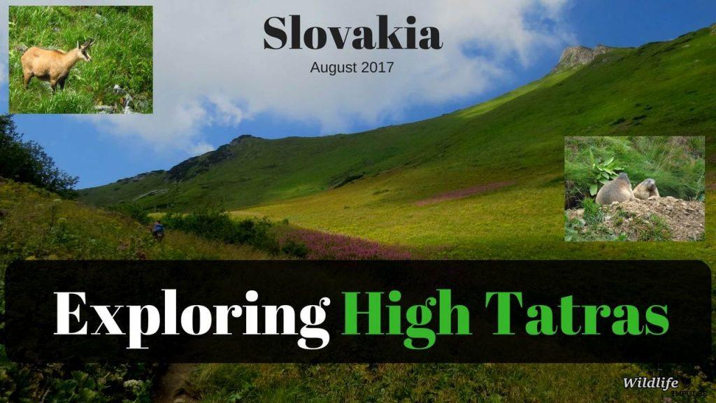 Exploring High Tatras - Aug 2017
