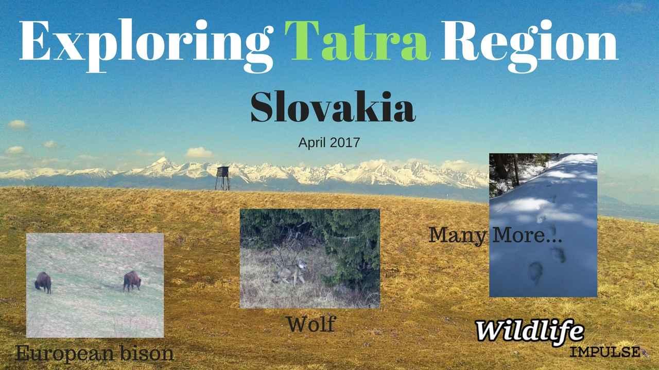 Exploring Tatra Region-April 2017