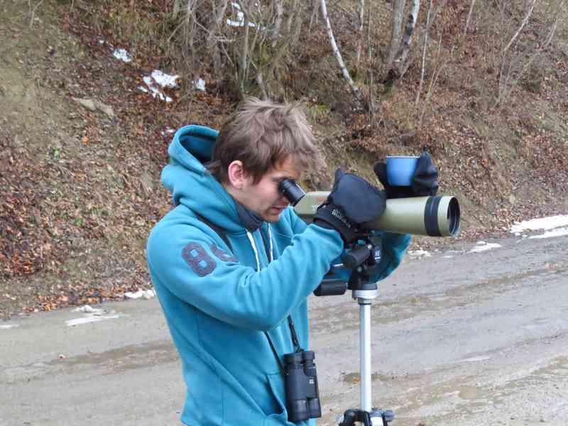 Scanning the landscape for wildlife