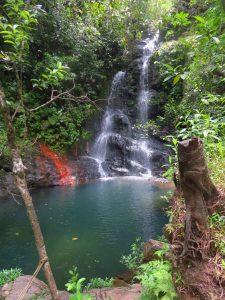 waterfall in cockscomb basin